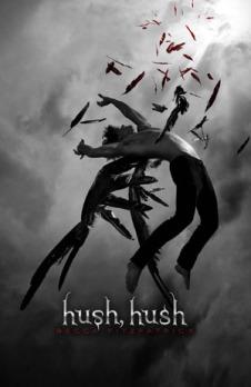 Hush hush book